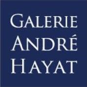 GALERIE ANDRE HAYAT Profile