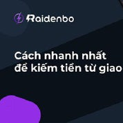 RaidenBo Profile