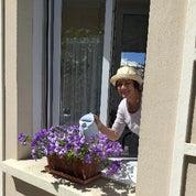 Chez Marie Antiques Profile