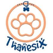 Thanesix Profile