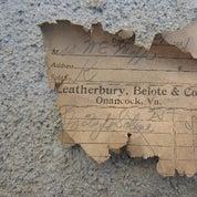 Leatherbury B. Profile