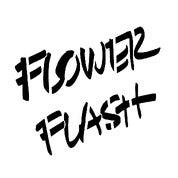 Flower Flash by Lewis Miller Design Profile