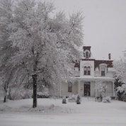 The House of Cedar Hall Profile