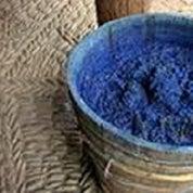 Indigo Bleu Profile