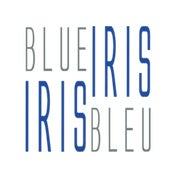 Blue Iris / Iris Bleu Profile