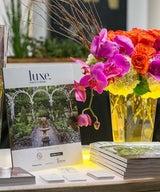 PRESS – Art Silicon Valley VIP Reception in LUXE SF Magazine