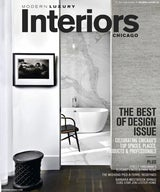 Modern Luxury Interiors Chicago, Winter