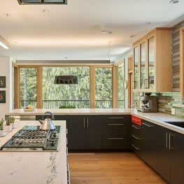 Mid Century inspired kitchen in San Francisco Bay Area