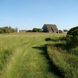 Path through the meadow.
