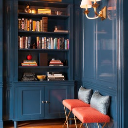 Library in high gloss blue millwork details