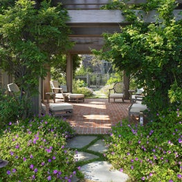 Vine covered pergola with natural-stone path bordered by blue flowered geranium