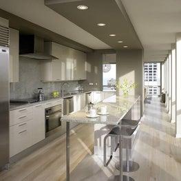 Gray Modern Kitchen - Michigan Avenue, Chicago, IL