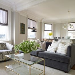Living Room in NYC Residence