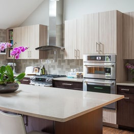 Bright contemporary Great Room kitchen