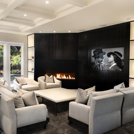 A contemporary style media room with hidden storage for collectibles.