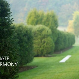 Innate harmony is easily achieved through the use of native plantings.