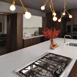 Oak Park Kitchen - MCM Inspired Chef's Kitchen