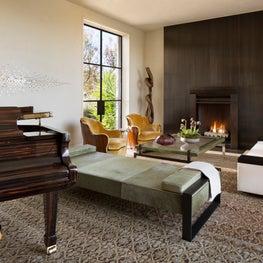 Sculptural Modern- Living Room