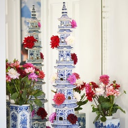 Blue & White Display
