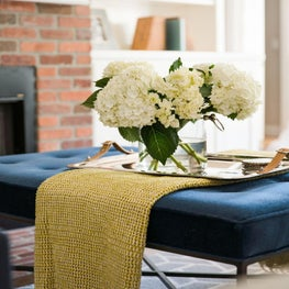 Velvet navy and yellow create an elegant coffee table.