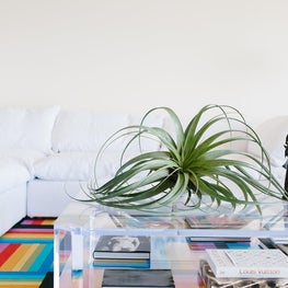 Palm Beach apartment with a rainbow colored rug and vintage lucite table