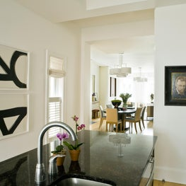 Kitchen in Logan Circle rowhouse