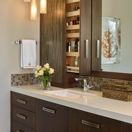 Bathroom features custom pull out medicine cabinet with resin panels