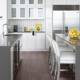 St. Petersburg, Florida Modern Penthouse Kitchen