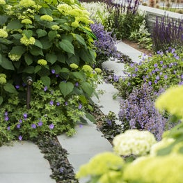 Lush plantings are layered to maintain color throughout the season