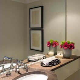 Powder Room in Logan Circle rowhouse