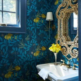 Historic Charmer, Featured in Luxe Magazine / Powder Room