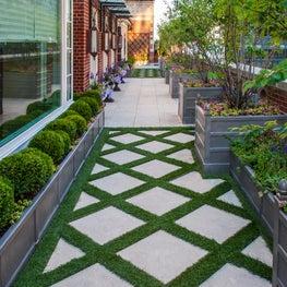 Penthouse Garden and Landscape