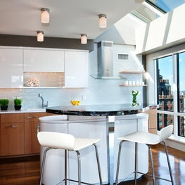 Penthouse on the Charles with Oval Island and Glass Backsplash