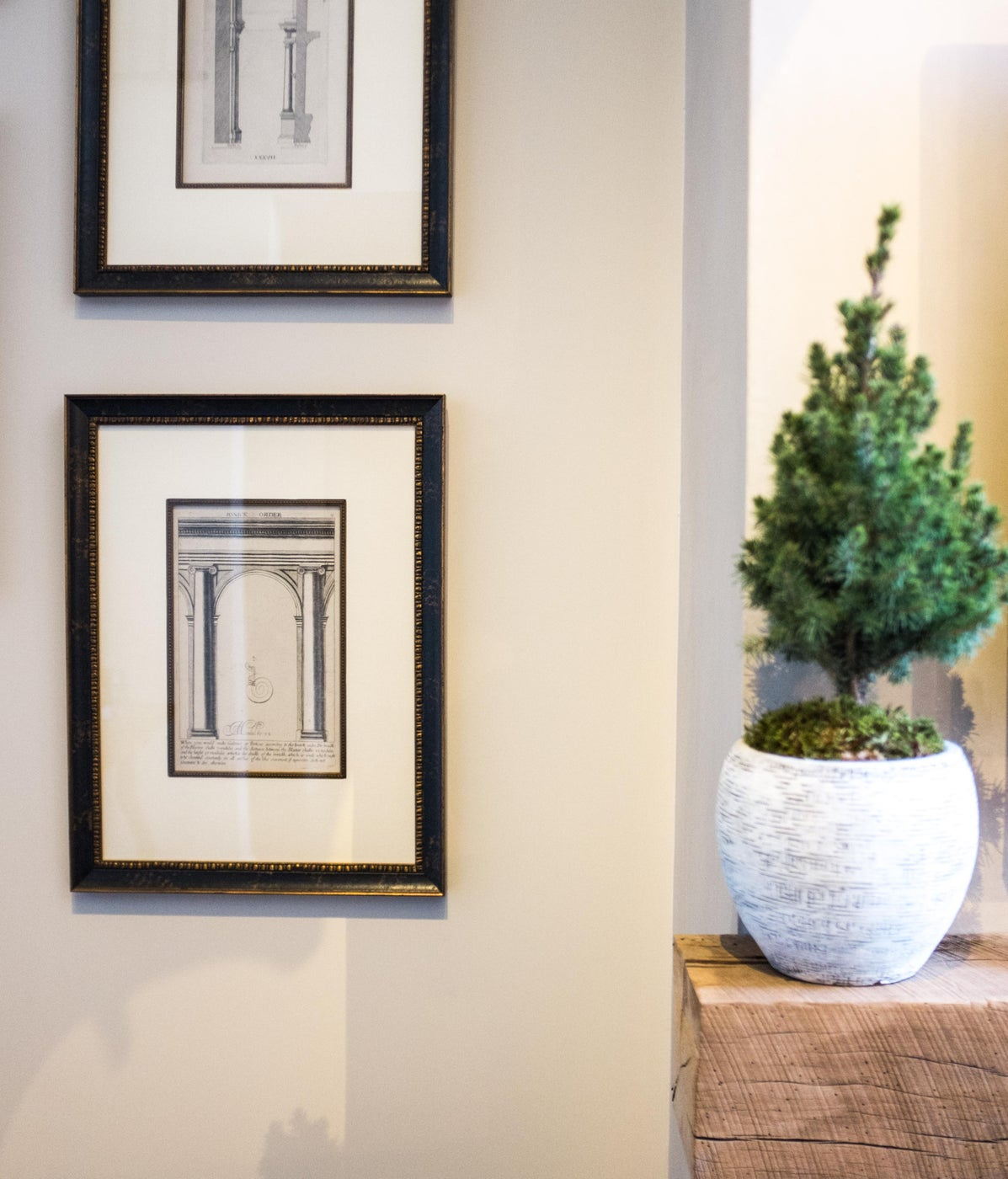 Edge of the mantel and architectural renderings
