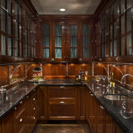 Historic New York City Townhouse Major Renovation - Wet Bar