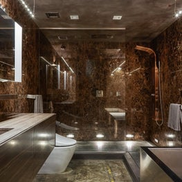 Bronze rainhead shower, Illuminated mirror, lighting details