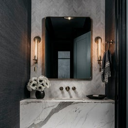 Moody powder room. Designed by Lindsay Gerber