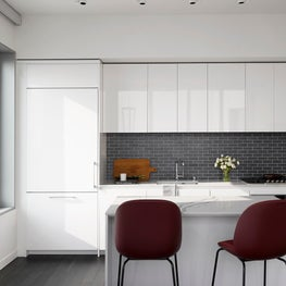 Mission Bay Penthouse Kitchen