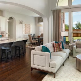 Frisco Transitional Living Room with Modern Twist