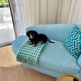 A blue boucle loveseat grounded on a sisal rug is perfect for a rest in the sun