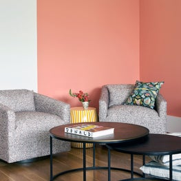 Colorful accent wall featuring Sherwin Williams paint