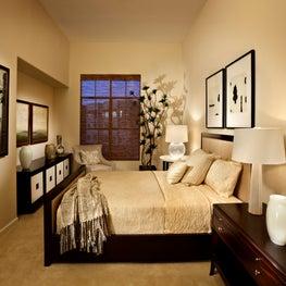 Elegant classic bedroom in light cream with dark accents, Scottsdale