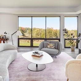 Curvey Modern Living Room