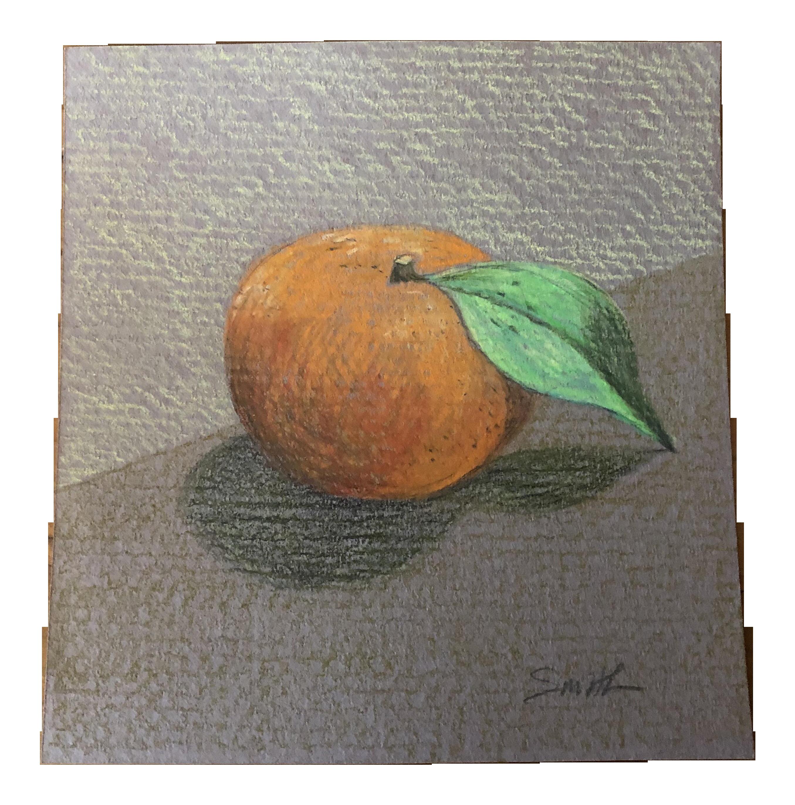 Nancy smith tangerine original colored pencil drawing