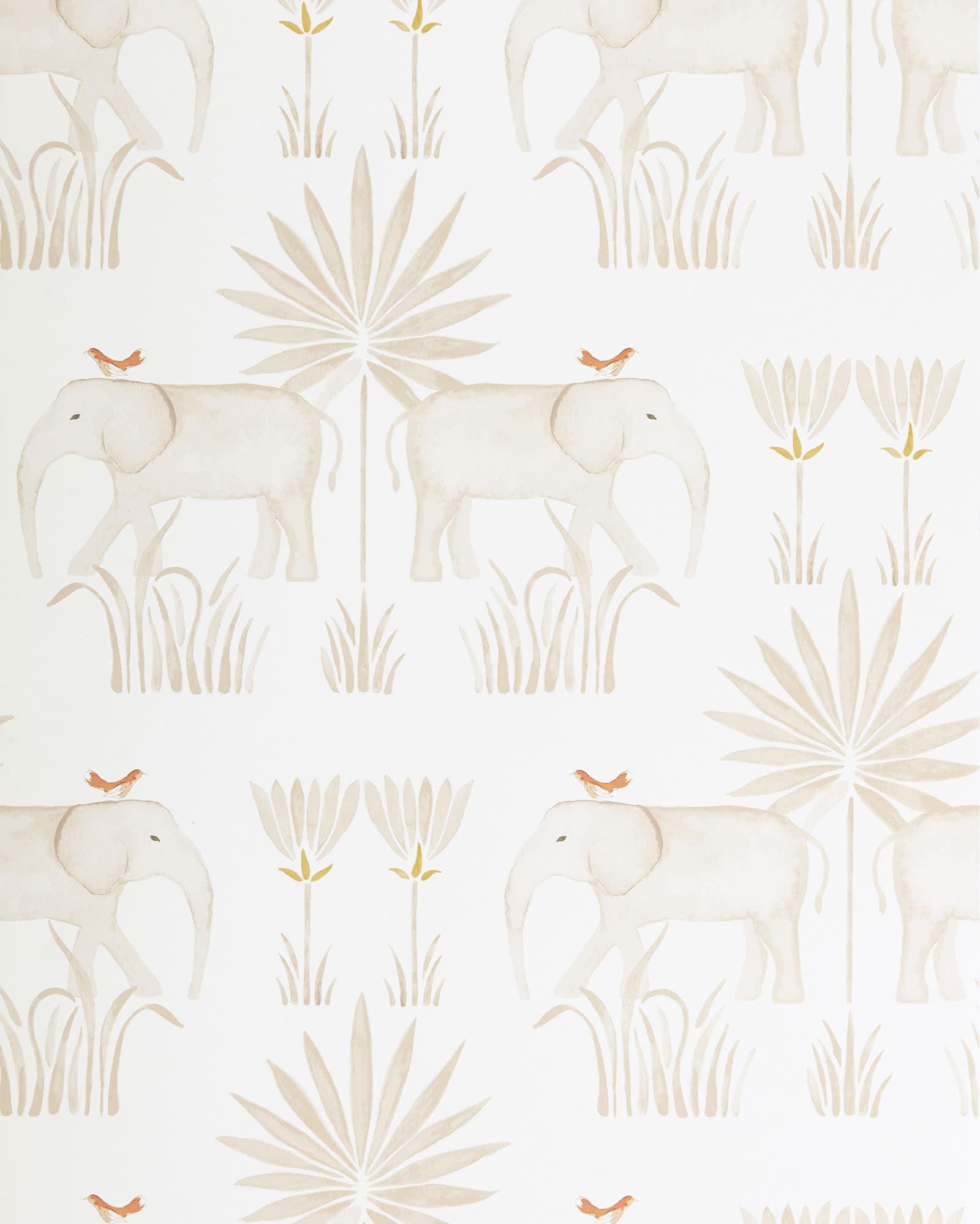 Serena Lily Kalahari Elephant Safari Wallpaper