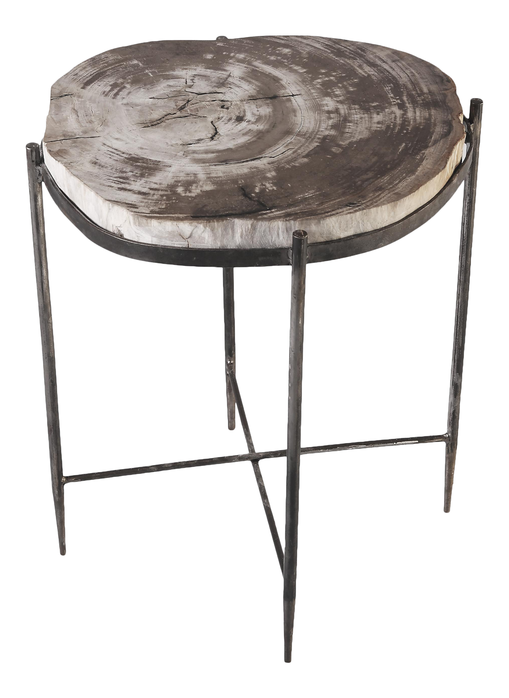 - Organic Modern Round Living Edge Petrified Wood Top Accent Table