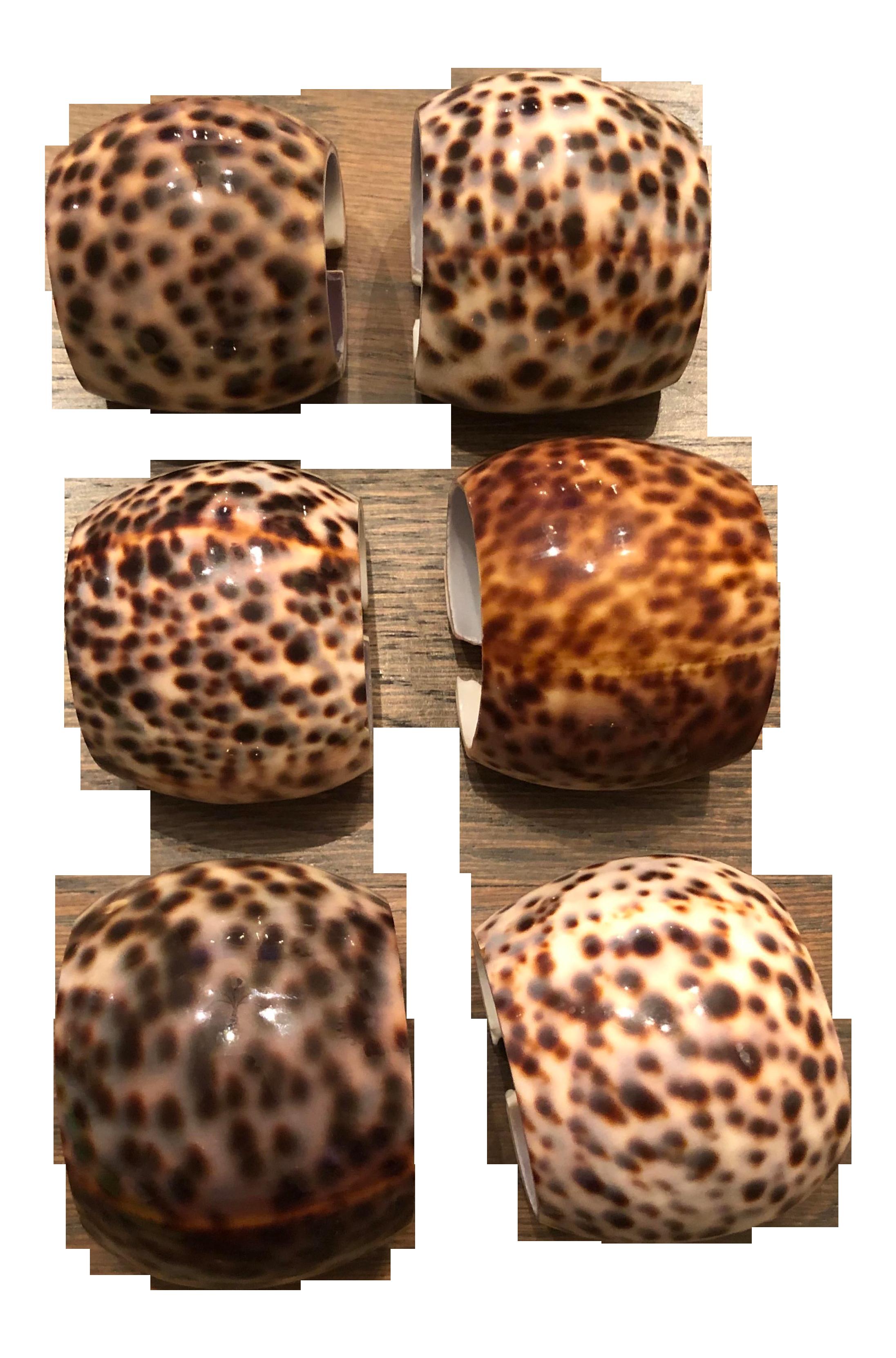 6 Cowry Shell Napkin Rings