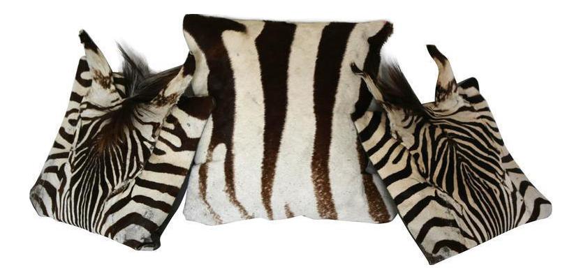 Authentic Zebra Skin Pillows Set Of 3 Chairish
