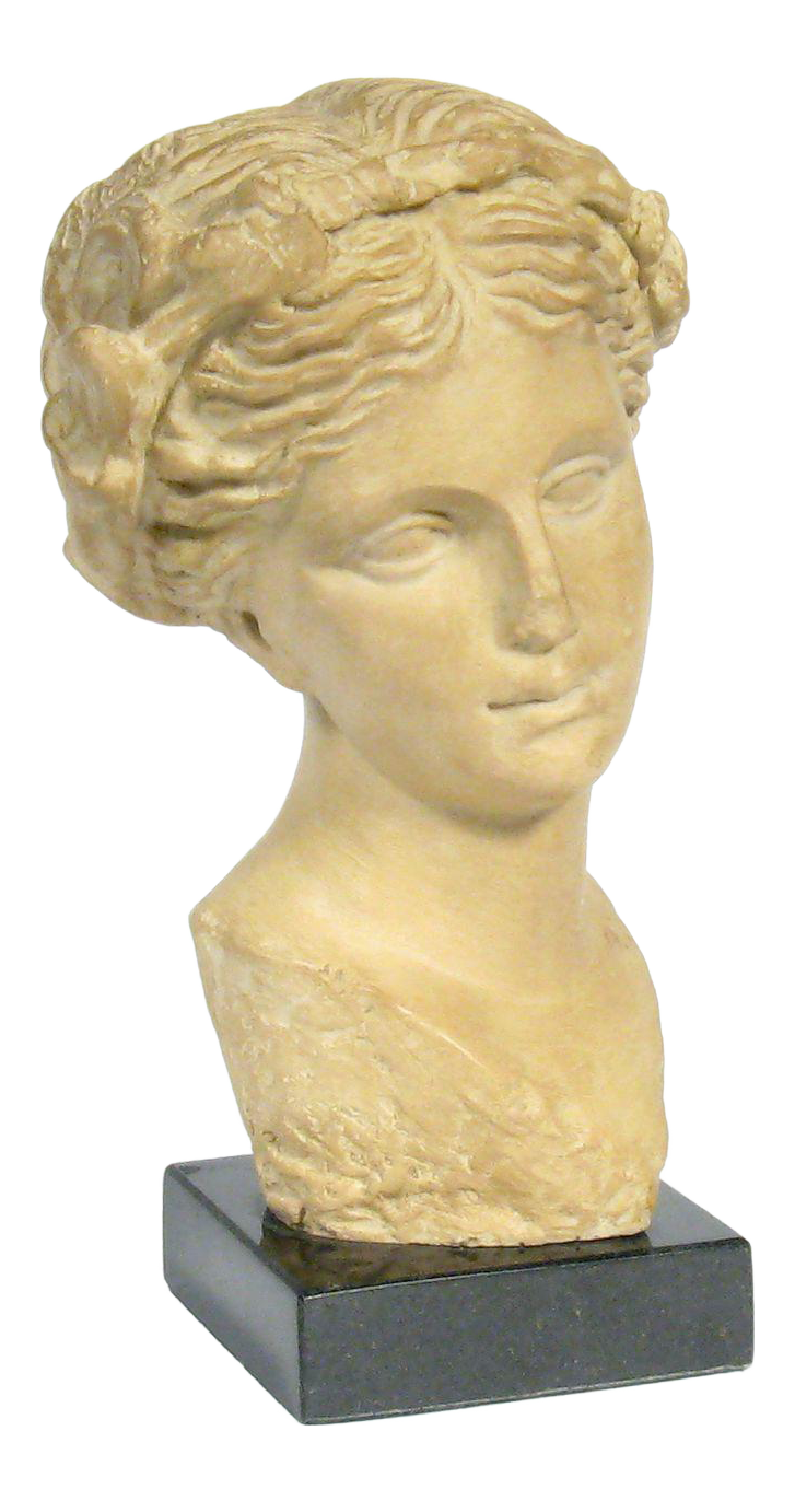 Classical Greek Female Bust of Aphrodite, Goddess of Love | Chairish