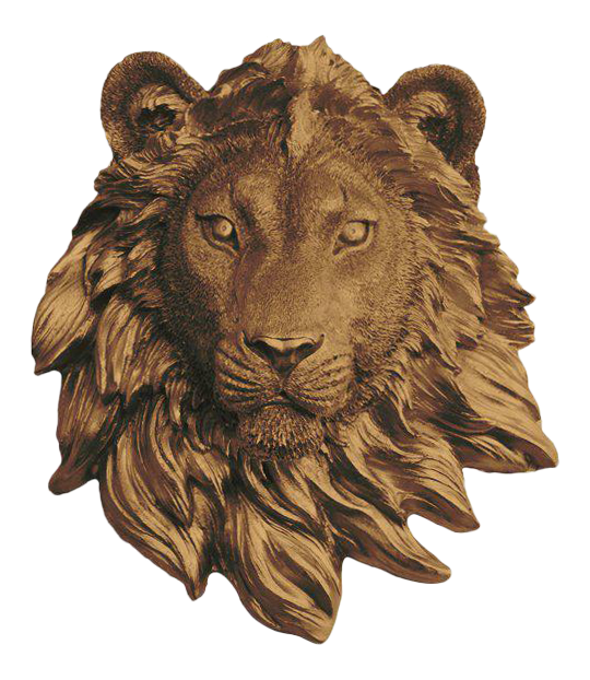 Wall Charmers Bronze Faux Taxidermy Lion Head Mount Chairish